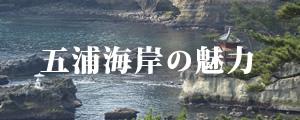 五浦海岸の魅力